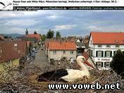 Веб камера - Германия, Борнгейм, Гнездо аистов. Вид 3