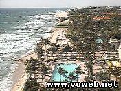 Веб камера - США, Флорида. Пальмовый пляж.